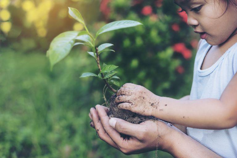 植物と触れ合う子供