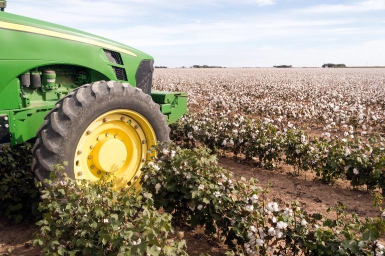 綿花栽培とトラクターによる収穫