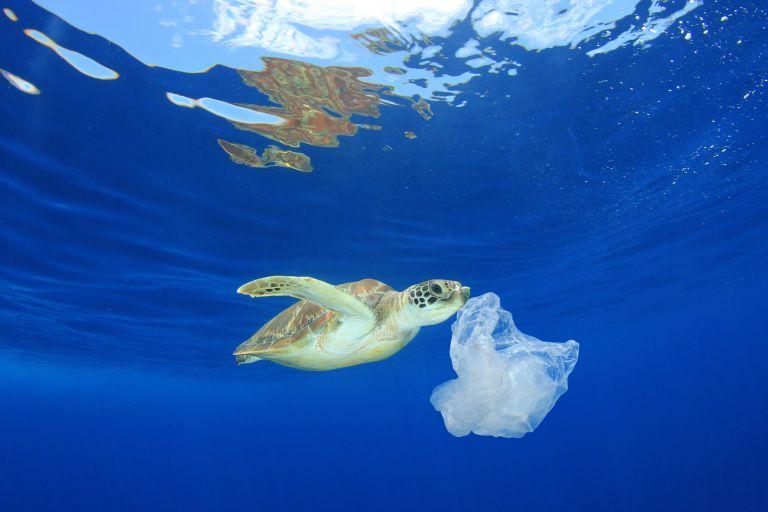 海洋プラスチック汚染