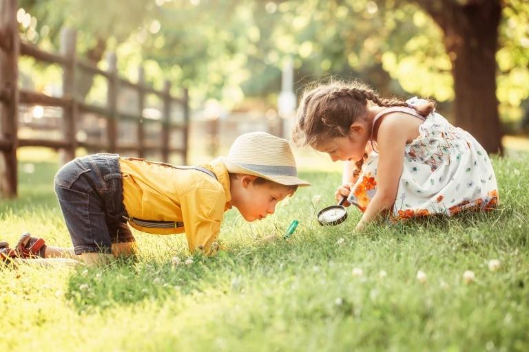 自然の中で遊ぶ子供たち